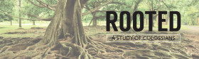Rooted: A Study of Colossians